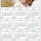 2021 Magnetic Calendar - Calendar Magnets - Today is My Lucky Day - Cat Themed 04 (5.25 x 8)