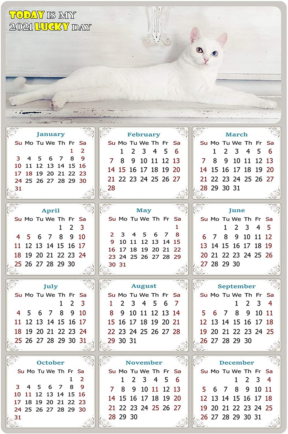 2021 Magnetic Calendar - Calendar Magnets - Today is My Lucky Day - Cat Themed 06 (7 x 10.5)