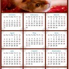 2021 Magnetic Calendar - Calendar Magnets - Today is My Lucky Day - Cat Themed 07 (7 x 10.5)