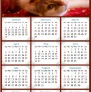 2021 Magnetic Calendar - Calendar Magnets - Today is My Lucky Day - Cat Themed 07 (5.25 x 8)