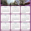 2021 Magnetic Calendar - Calendar Magnets - Today is My Lucky Day - Cat Themed 08 (5.25 x 8)