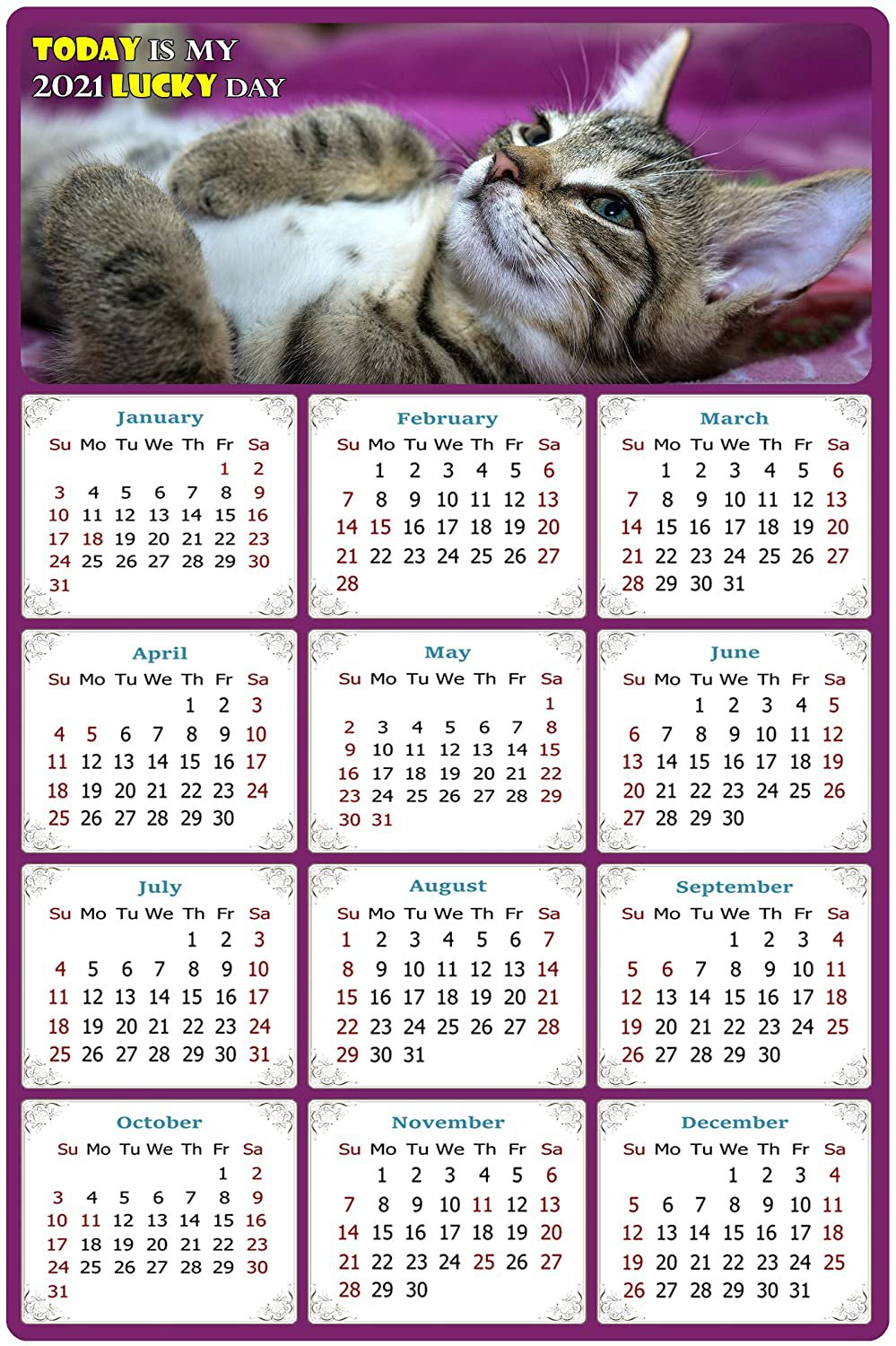 2021 Magnetic Calendar - Calendar Magnets - Today is My Lucky Day - Cat Themed 08 (7 x 10.5)
