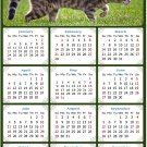 2021 Magnetic Calendar - Calendar Magnets - Today is My Lucky Day - Cat Themed 09 (5.25 x 8)