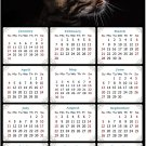 2021 Magnetic Calendar - Calendar Magnets - Today is My Lucky Day - Cat Themed 010 (5.25 x 8)