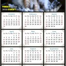 2021 Magnetic Calendar - Calendar Magnets - Today is My Lucky Day - Cat Themed 011 (5.25 x 8)