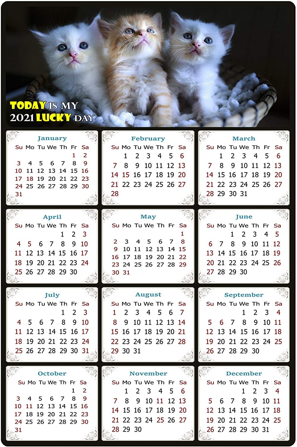 2021 Magnetic Calendar - Calendar Magnets - Today is My Lucky Day - Cat Themed 011 (7 x 10.5)