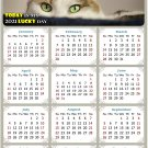 2021 Magnetic Calendar - Calendar Magnets - Today is My Lucky Day - Cat Themed 012 (7 x 10.5)