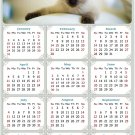 2021 Magnetic Calendar - Calendar Magnets - Today is My Lucky Day - Cat Themed 013 (5.25 x 8)