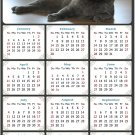 2021 Magnetic Calendar - Calendar Magnets - Today is My Lucky Day - Cat Themed 014 (5.25 x 8)