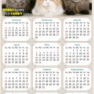 2021 Magnetic Calendar - Calendar Magnets - Today is My Lucky Day - Cat Themed 015 (7 x 10.5)