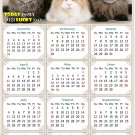 2021 Magnetic Calendar - Calendar Magnets - Today is My Lucky Day - Cat Themed 015 (5.25 x 8)