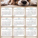 2021 Magnetic Calendar - Calendar Magnets - Today is My Lucky Day - Dogs Themed 01 (5.25 x 8)