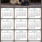 2021 Magnetic Calendar - Calendar Magnets - Today is My Lucky Day - Dogs Themed 02 (7 x 10.5)
