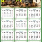 2021 Magnetic Calendar - Calendar Magnets - Today is My Lucky Day - Dogs Themed 04 (5.25 x 8)