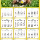 2021 Magnetic Calendar - Calendar Magnets - Today is My Lucky Day - Dogs Themed 06 (5.25 x 8)