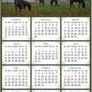 2021 Magnetic Calendar - Calendar Magnets - Today is My Lucky Day - Horses Themed 04 (5.25 x 8)