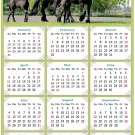 2021 Magnetic Calendar - Calendar Magnets - Today is My Lucky Day - Horses Themed 05 (5.25 x 8)