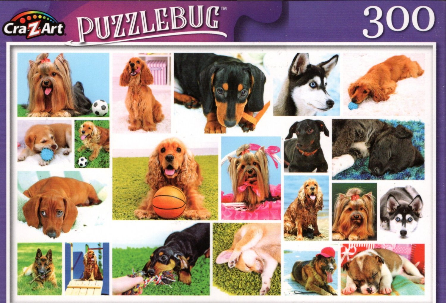 Dogs - 300 Pieces Jigsaw Puzzle