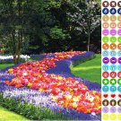 2021 16 Month Wall Calendar - Gardens - with 100 Reminder Stickers