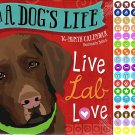 2021 16 Month Wall Calendar - A Dogs Life - with 100 Reminder Stickers