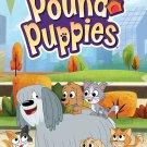 Pound Puppies: A Rare Pair DVD