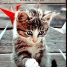 Kittens 2021 - 2022 2 Year Pocket Planner / Calendar / Organizer - Monthly Page Format - v2