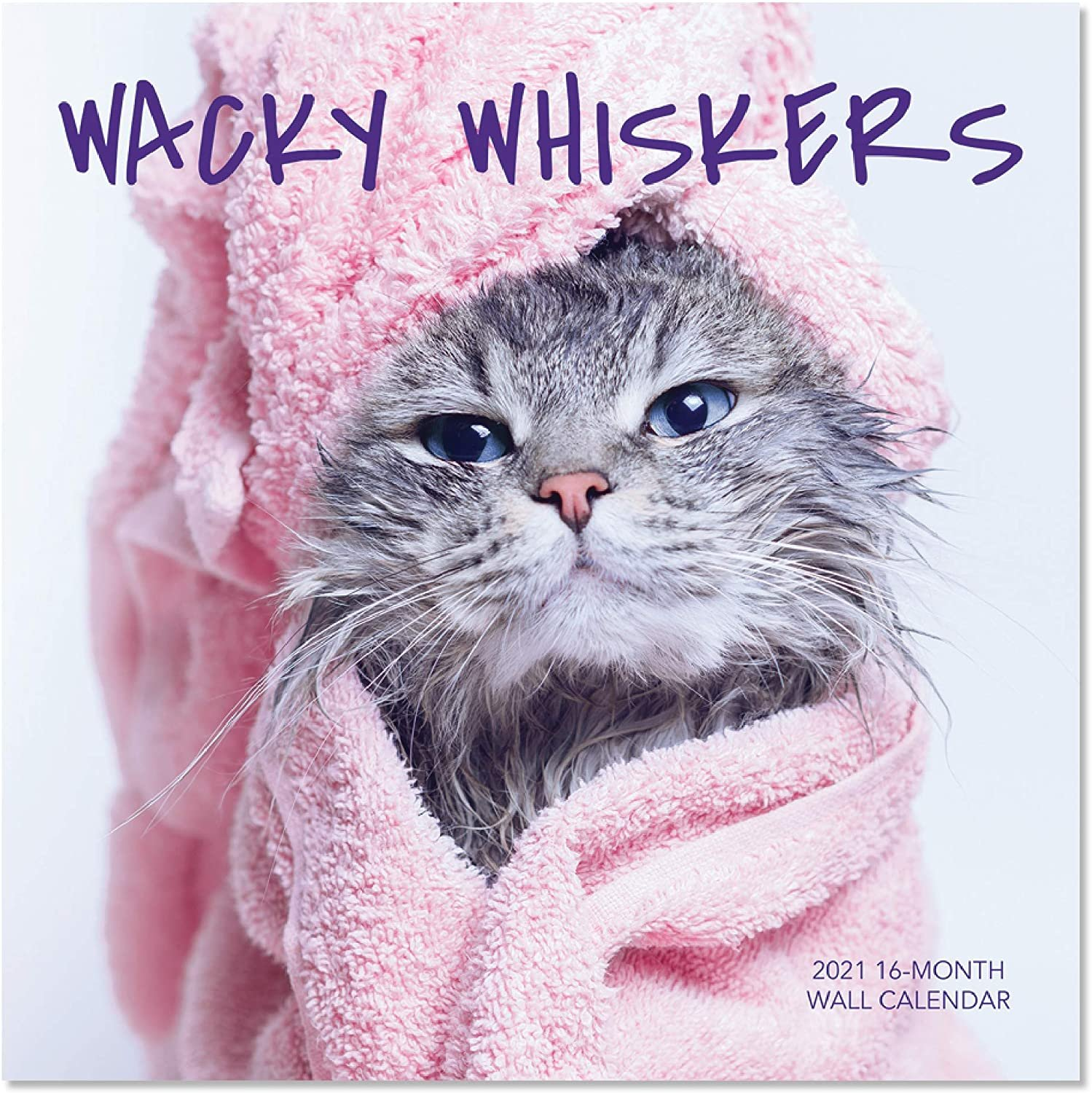 2021 Wacky Whiskers 16-Month Wall Calendar