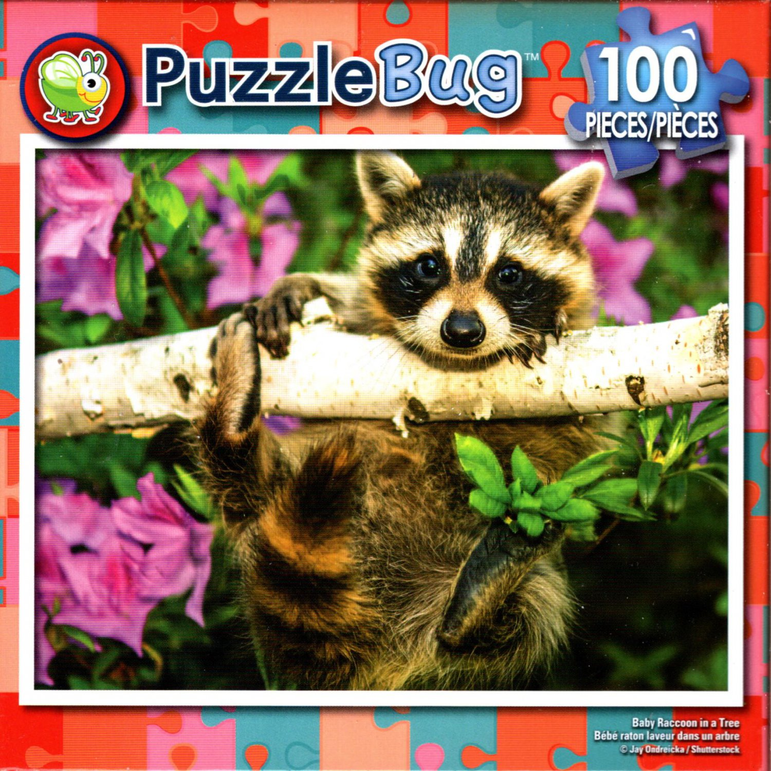 Baby Raccoon in the Tree - 100 Pieces Jigsaw Puzzle