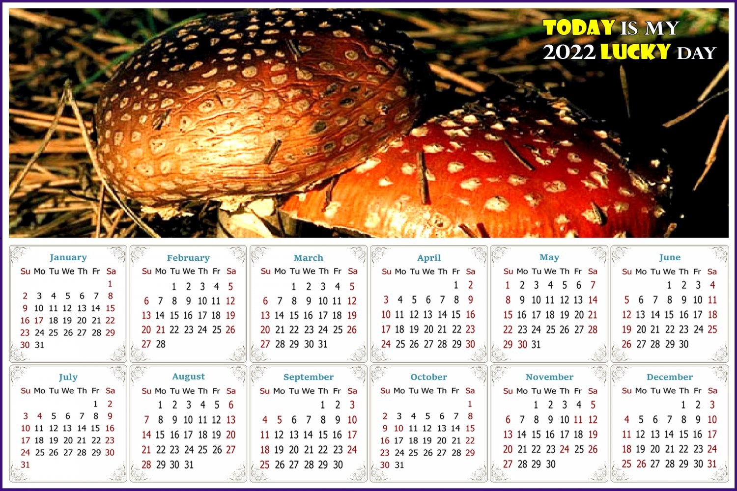 2022 Magnetic Calendar - Calendar Magnets - Today is my Lucky Day - Edition #38