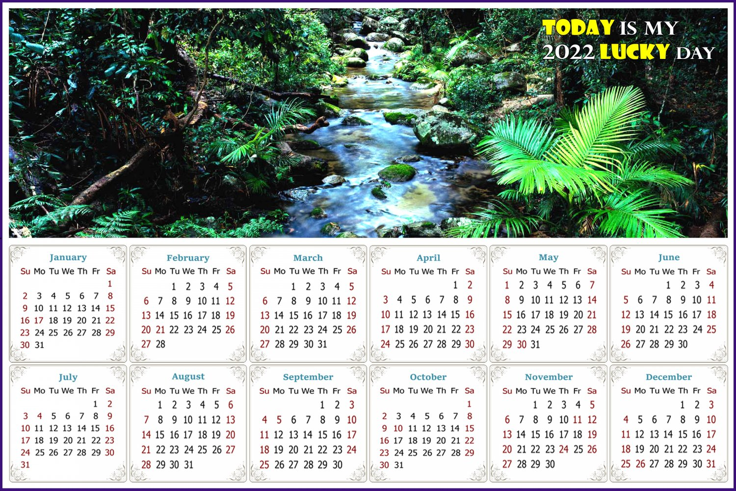 2022 Magnetic Calendar - Today is My Lucky Day - (Daintree National Park)