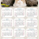 2022 Magnetic Calendar - Calendar Magnets - Today is My Lucky Day - Cat Themed 015 (7 x 10.5)