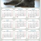 2022 Magnetic Calendar - Calendar Magnets - Today is My Lucky Day - Cat Themed 014 (7 x 10.5)