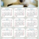 2022 Magnetic Calendar - Calendar Magnets - Today is My Lucky Day - Cat Themed 013 (5.25 x 8)
