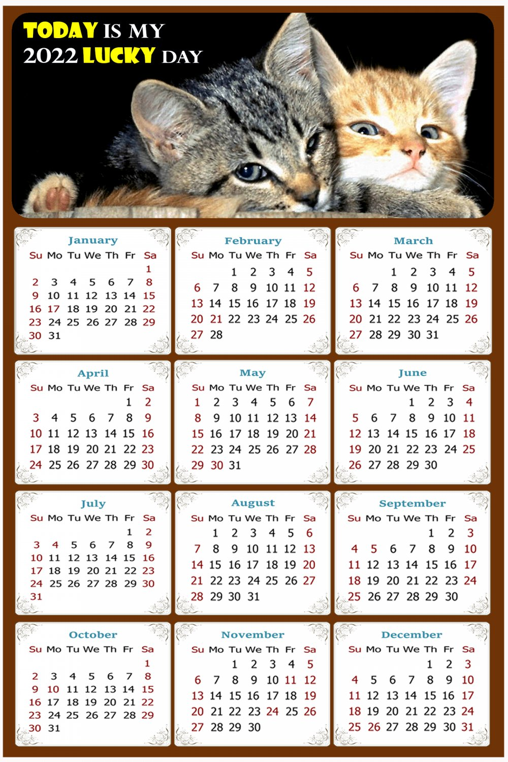 2022 Magnetic Calendar - Calendar Magnets - Today is My Lucky Day - Cat Themed 010 (7 x 10.5)