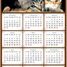 2022 Magnetic Calendar - Calendar Magnets - Today is My Lucky Day - Cat Themed 010 (5.25 x 8)