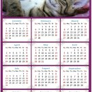 2022 Magnetic Calendar - Calendar Magnets - Today is My Lucky Day - Cat Themed 08 (7 x 10.5)