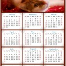 2022 Magnetic Calendar - Calendar Magnets - Today is My Lucky Day - Cat Themed 07 (5.25 x 8)