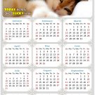 2022 Magnetic Calendar - Calendar Magnets - Today is My Lucky Day - Cat Themed 04 (7 x 10.5)