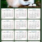 2022 Magnetic Calendar - Calendar Magnets - Today is My Lucky Day - Cat Themed 02 (8 x10)