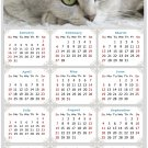 2022 Magnetic Calendar - Calendar Magnets - Today is My Lucky Day - Cat Themed 1 (8 x 10)