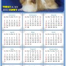 2022 Magnetic Calendar - Calendar Magnets - Today is My Lucky Day - Dogs Themed 07 (8 x 5.25)