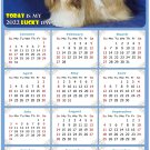 2022 Magnetic Calendar - Calendar Magnets - Today is My Lucky Day - Dogs Themed 07 (7 x 10.5)