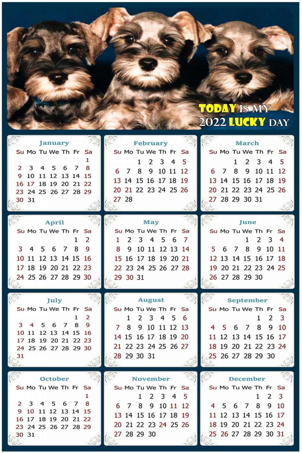 2022 Magnetic Calendar - Calendar Magnets - Today is My Lucky Day - Dogs Themed 08 (7 x 10.5)