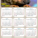2022 Magnetic Calendar - Calendar Magnets - Today is My Lucky Day - Dogs Themed 012 (8 x 5.25)