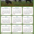 2022 Magnetic Calendar - Calendar Magnets - Today is My Lucky Day - Horses Themed 04 (7 x 10.5)