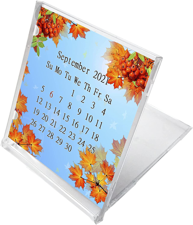 2021 - 2022 CD-Style Desk Calendar 16 Months Calendar / Planner / (Edition #016)