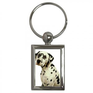Dalmatian Key Chain Rectangle 12100114