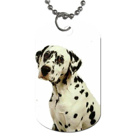 Dalmation Dog Tag Necklace Chain - 12100117