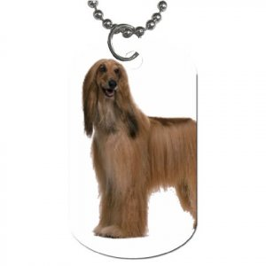 Afghan Hound Dog - Dog Tag Necklace Chain - 12112194