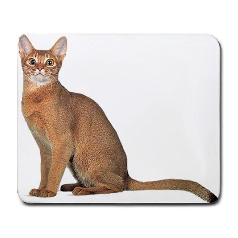 Abyssinian Cat Pet Lover  Large Mousepad 12168390